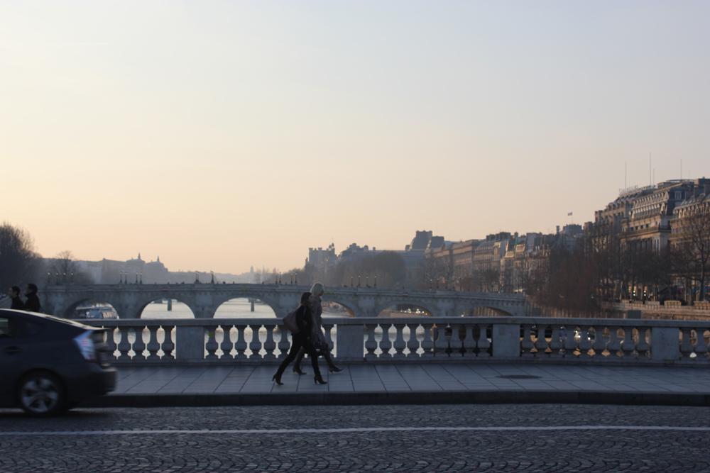 paris along the seine