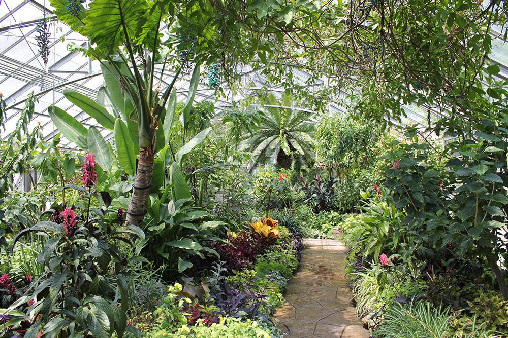 allan gardens lush