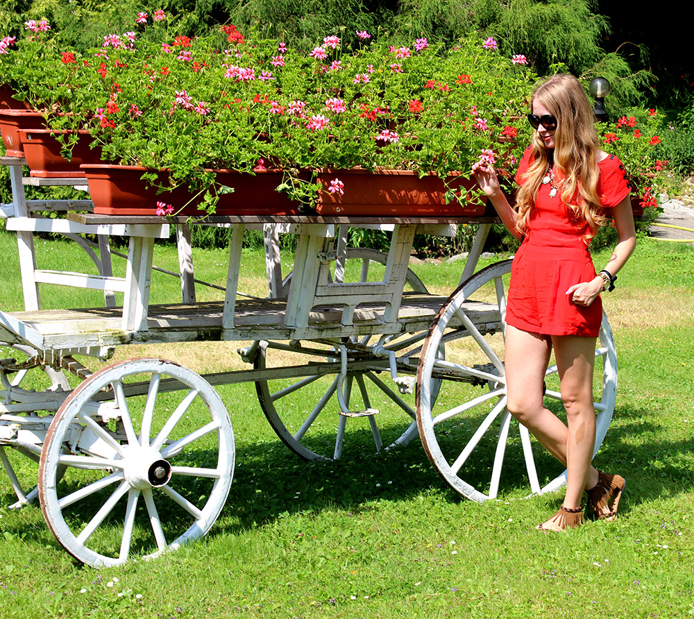geraniums and red romper