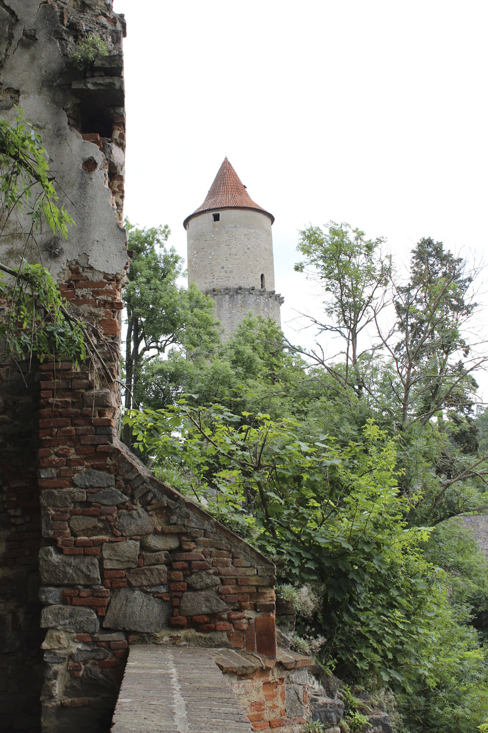 zvikov castle tower