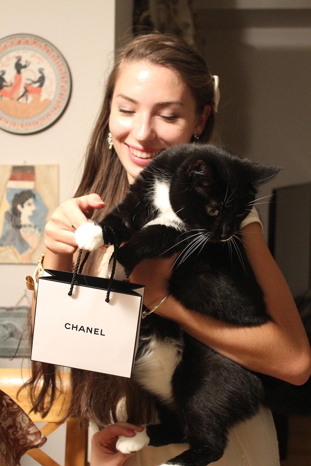 coco the cat and chanel