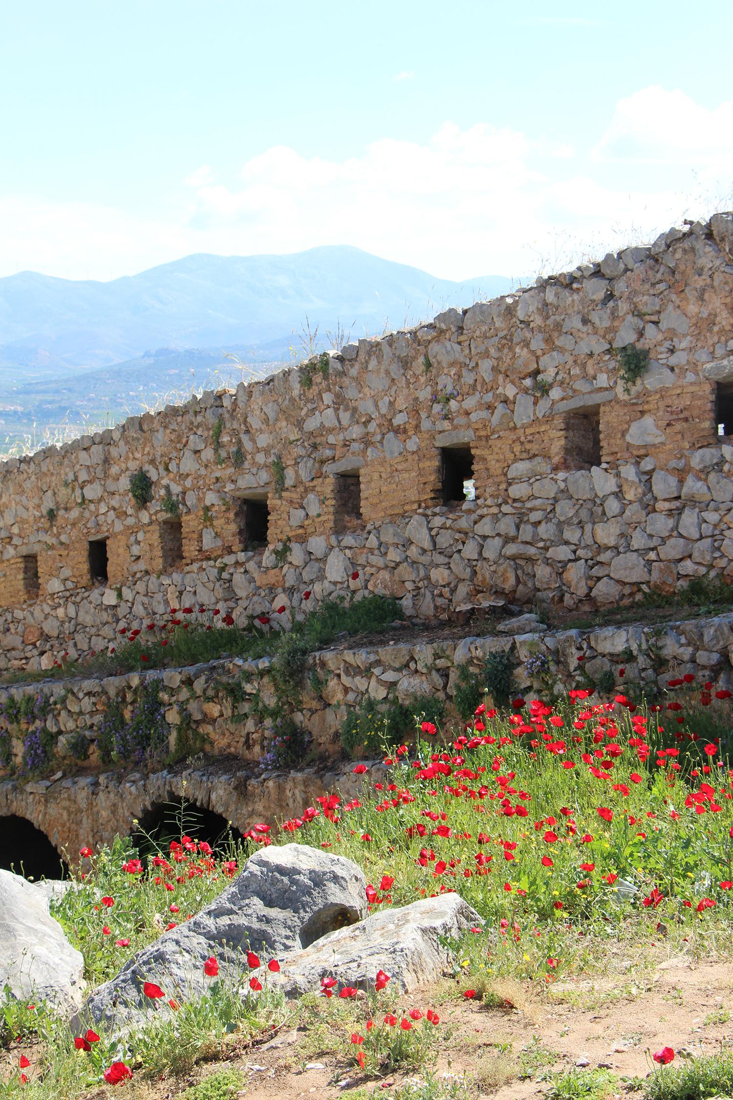 nafplio palamidi bastion poppies