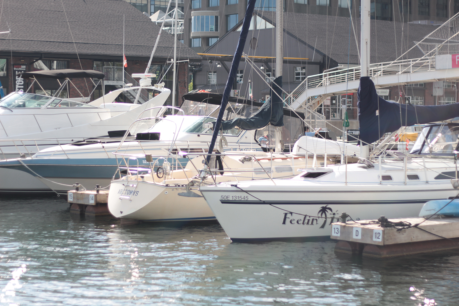 toronto harbourfront yachts
