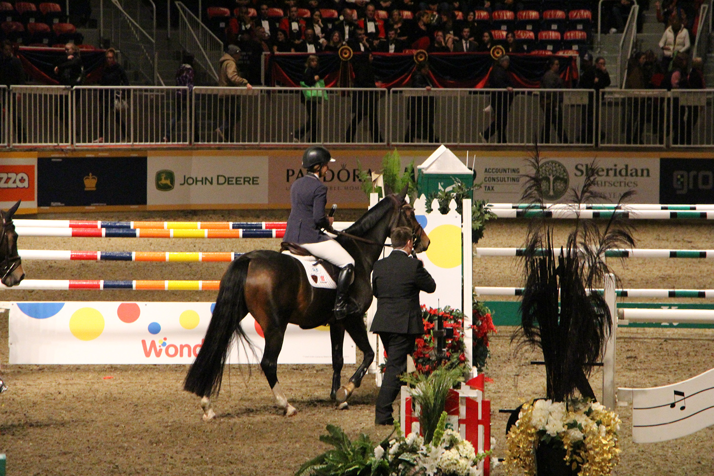 royal winter fair horse show 3