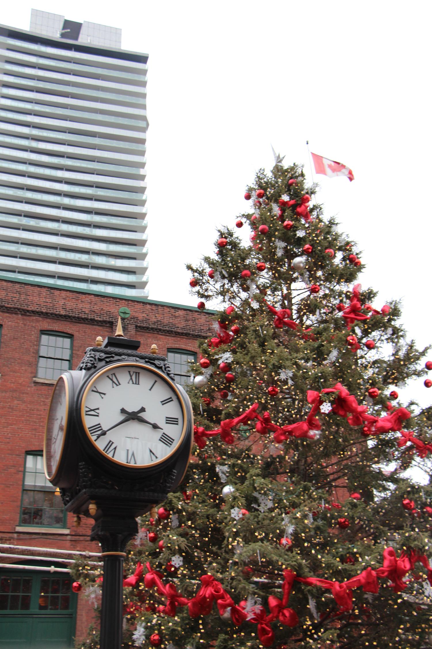 toronto christmas market tree