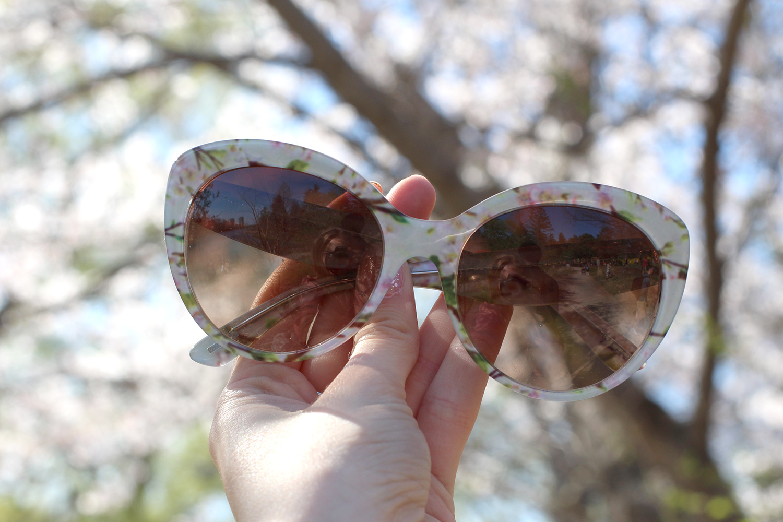 dolce and gabbana blossom sunglasses