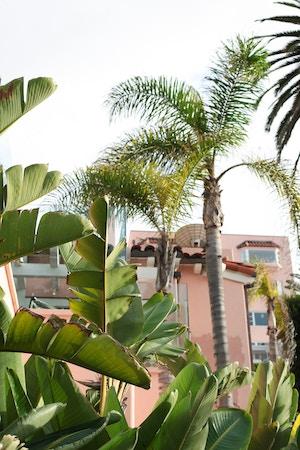 La Jolla San Diego (13 of 14)