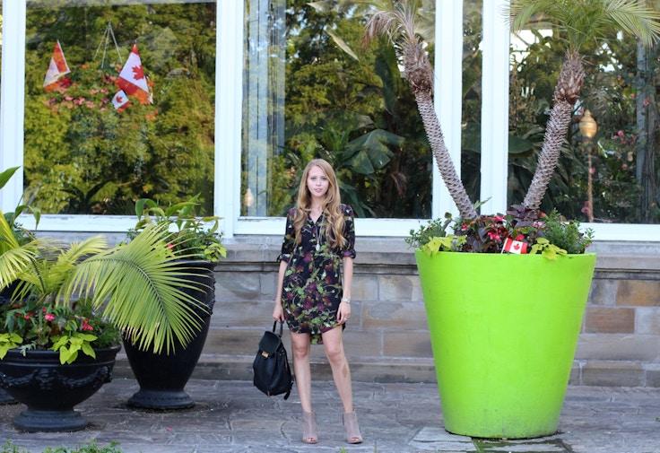 allan gardens joe fresh shirt dress