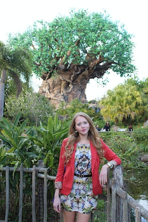 animal kingdom outfit