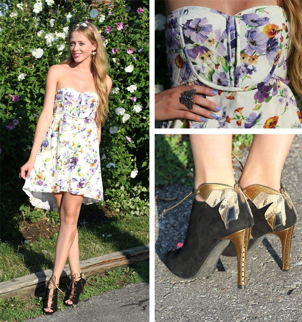 Camelias & Butterflies