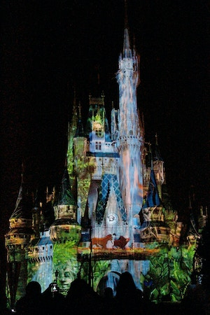 cinderella castle lion king projection