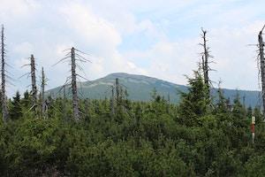 czech mountain view