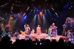 disneyworld animal kingdom lion king show