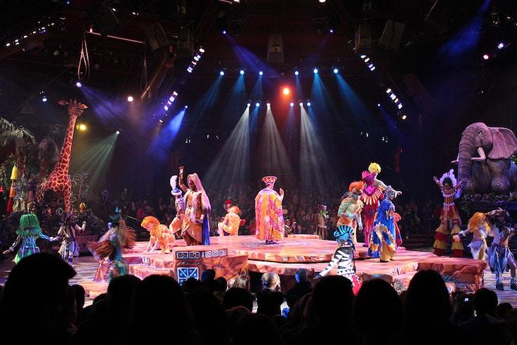 disneyworld animal kingdom lion king show