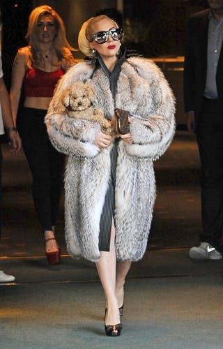 Lady Gaga Stands Fur Something…