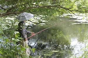 high park fishing