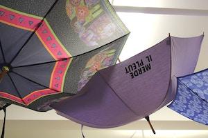 merde il pleut umbrella
