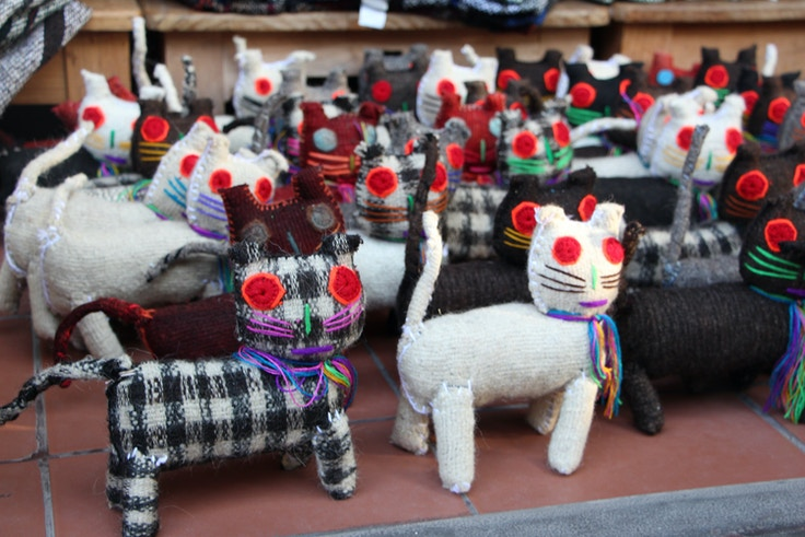 mexican cats