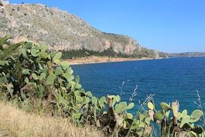 nafplio greece cacti