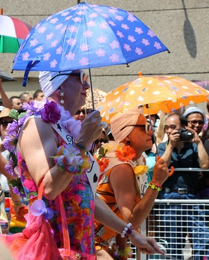 pride parade bathing beauties