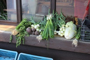 roadside vegetables in czech republic
