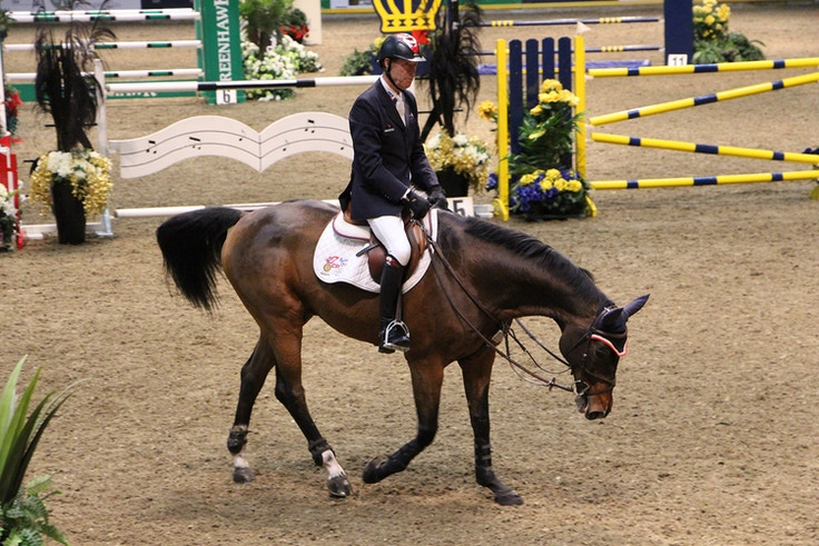 royal winter fair horse show 5