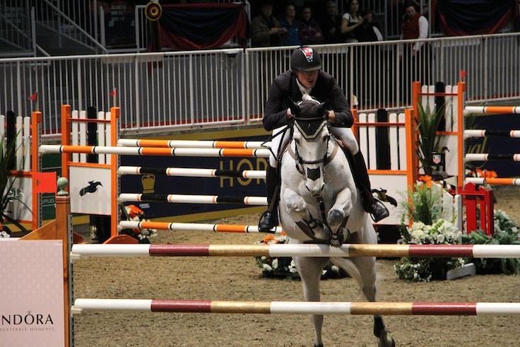 royal winter fair horse show 9