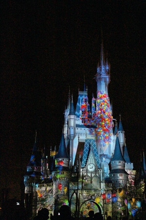 up projection on magic kingdom castle