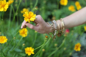 yellow flower alex and ani bracelets arm party