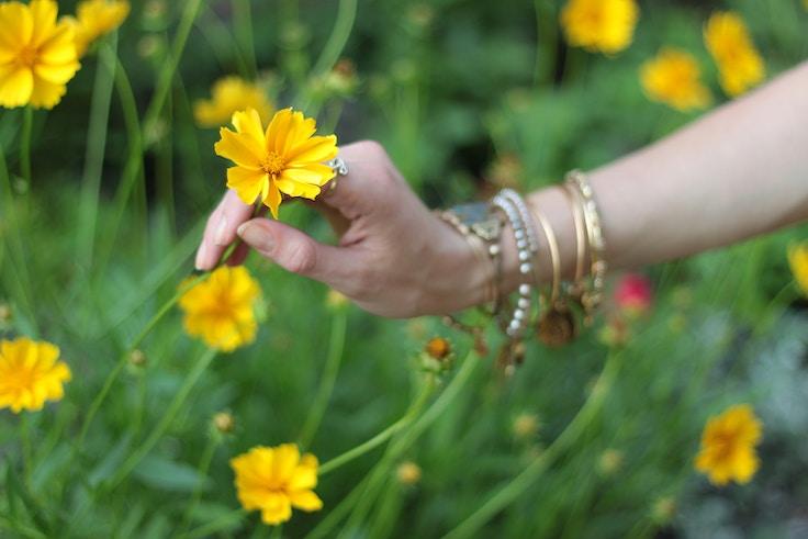 yellow flower alex and ani bracelets arm party