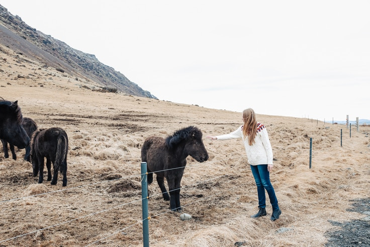 Iceland Day 1 Itinerary (6 of 25)