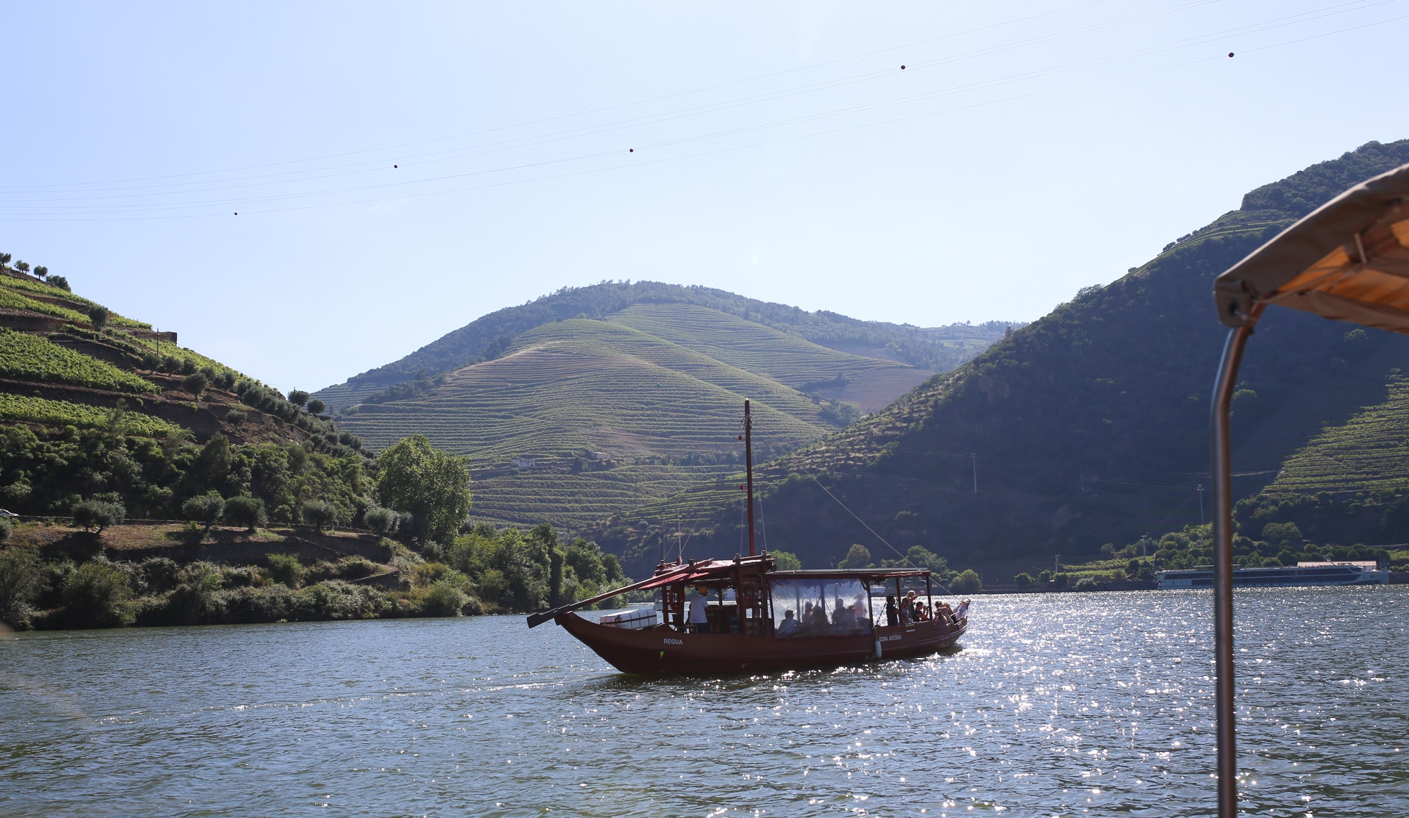 douro valley boat cruise from pinhao