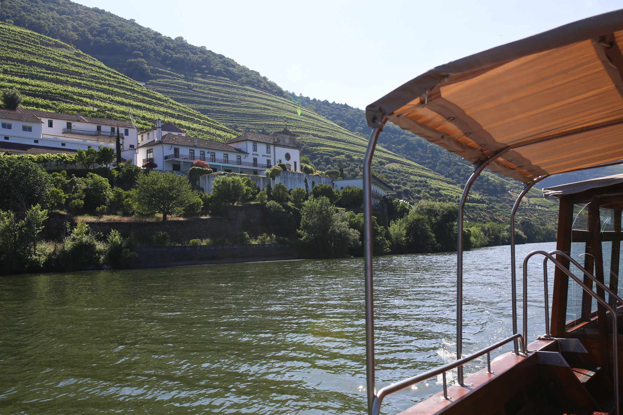 douro river boat cruise review
