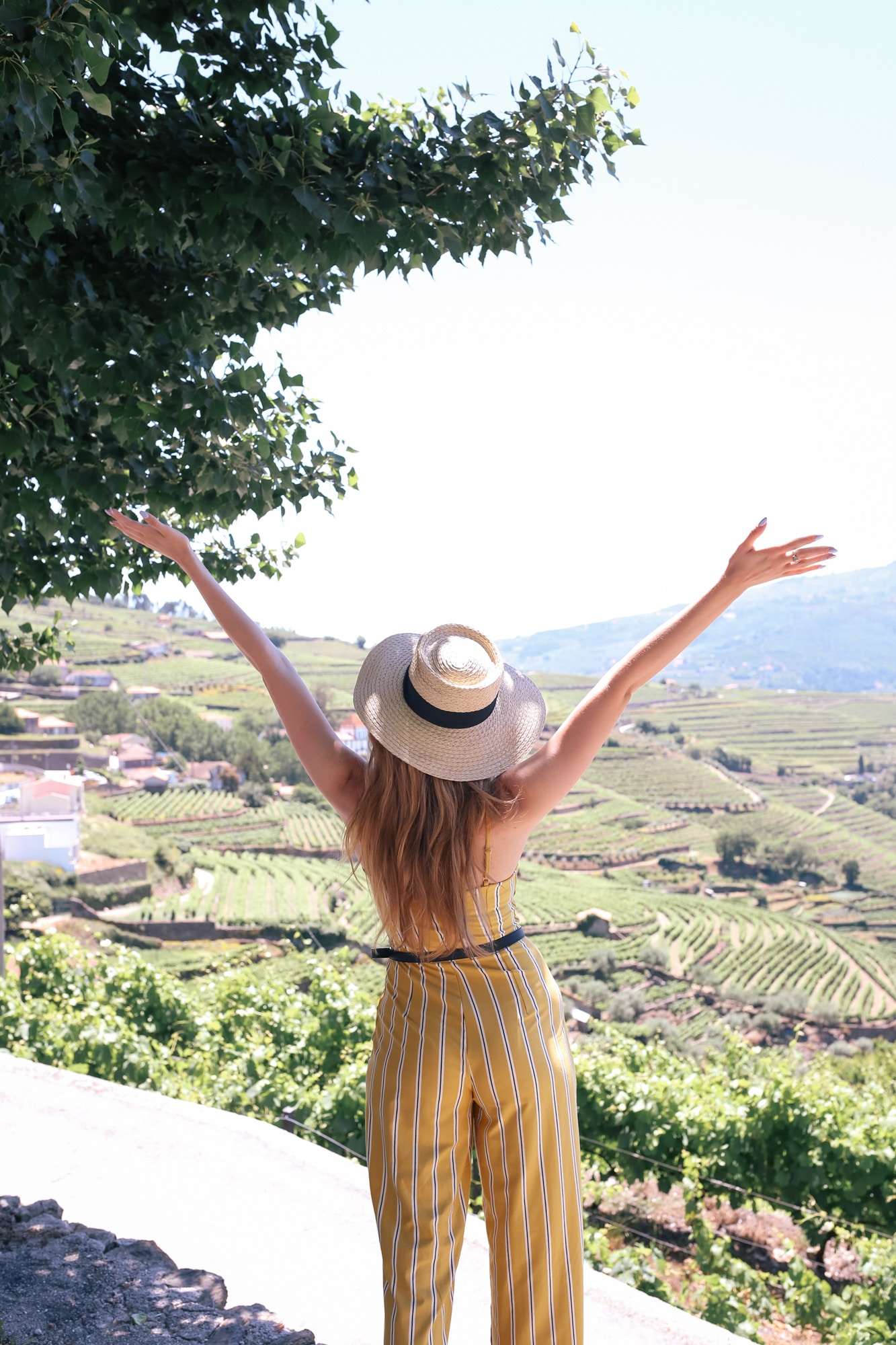 winery tours in the Douro Valley