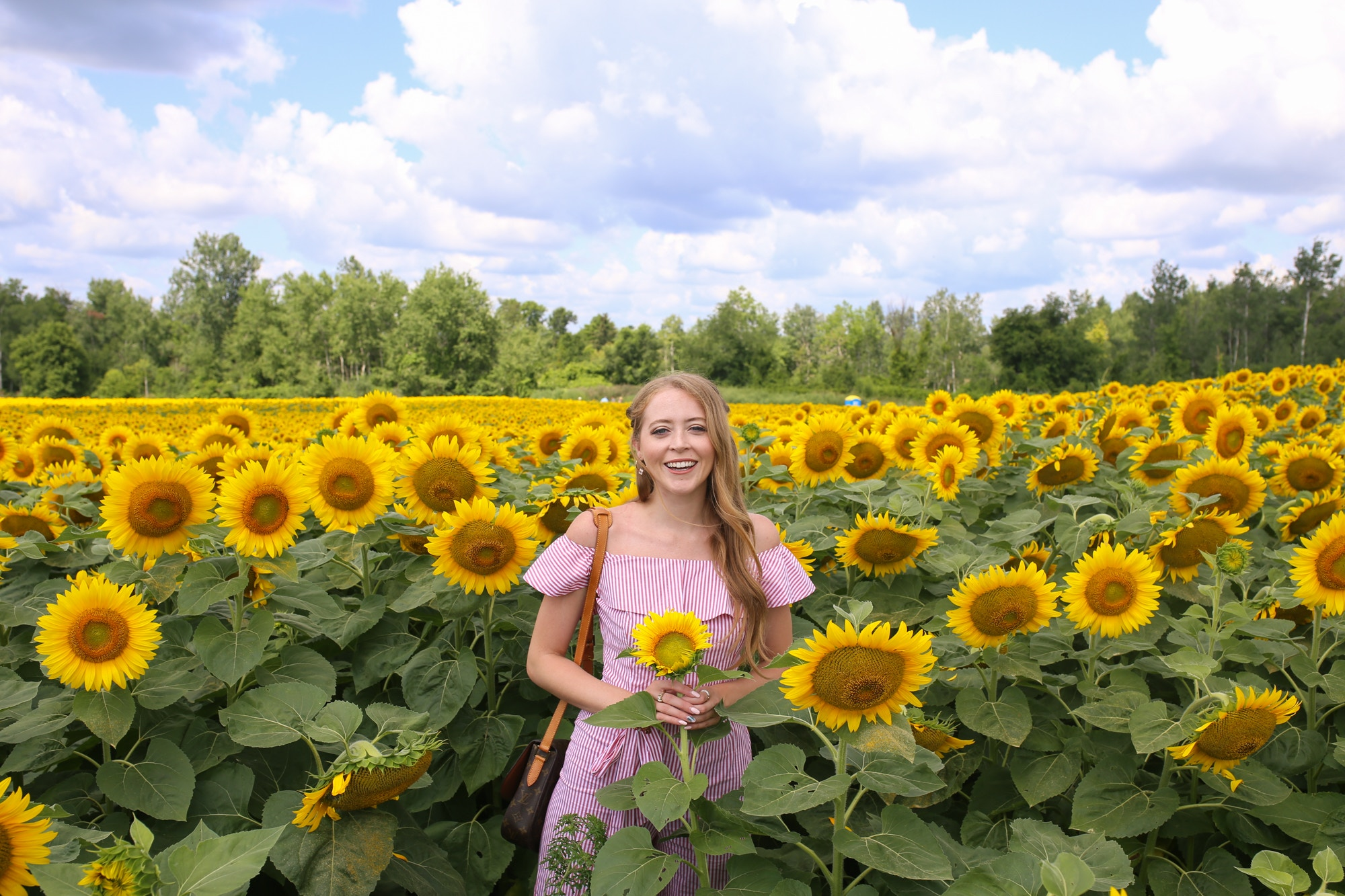 girl in sunflower field