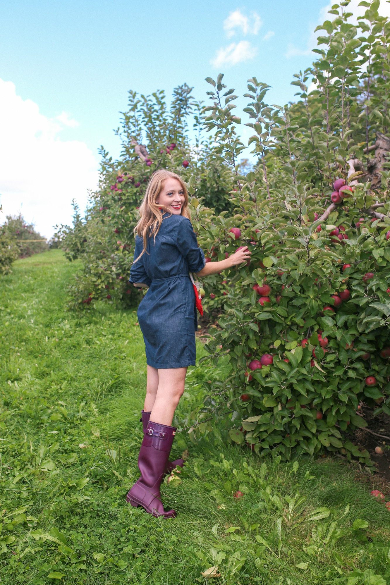 Apple picking near Toronto: Applewood Farm Winery is a gorgeous orchard 30 minutes away.