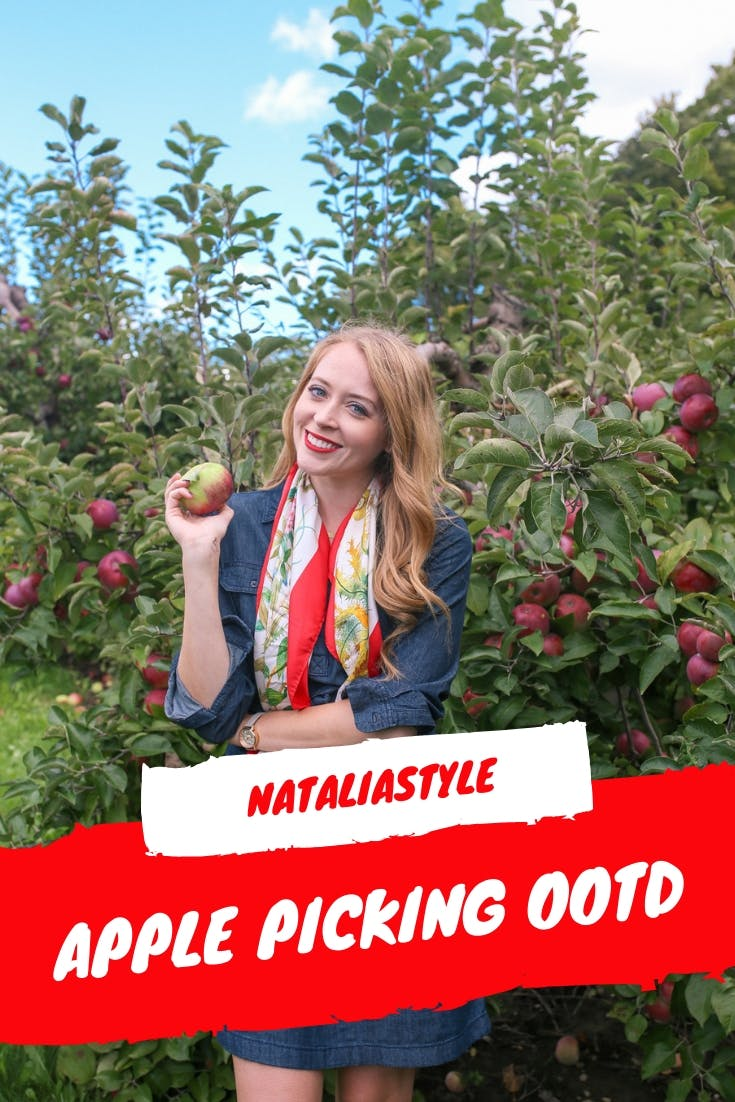 A denim dress and silk scarf are a chic option for a fall day apple picking! Read more at nataliastyleblog.com