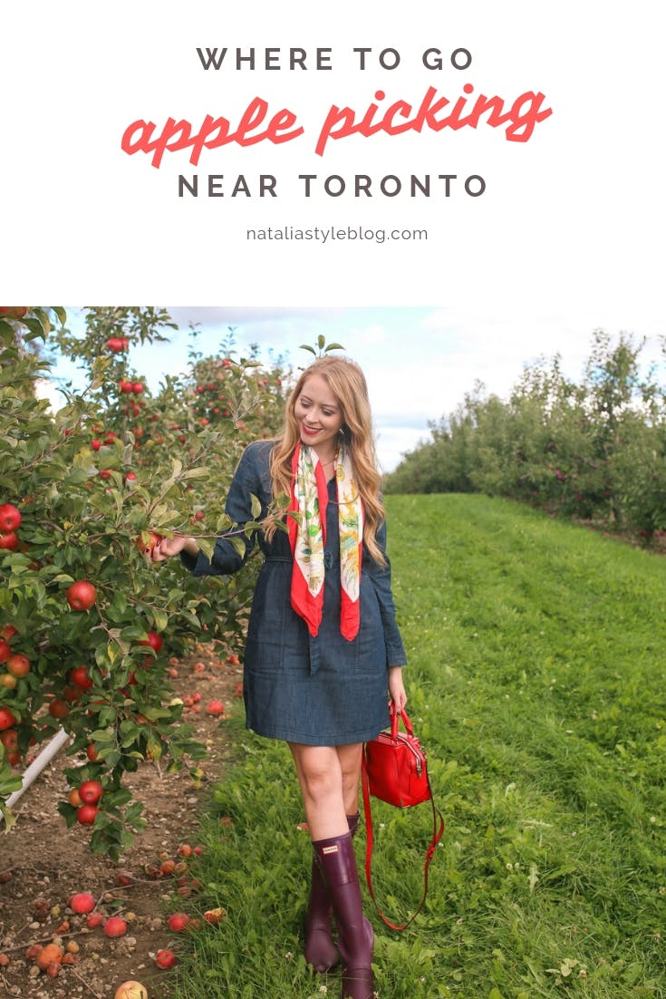 Where to go apple picking near Toronto: a guide to a local apple orchard and fruit winery, only 30 minutes from Toronto. Plus, get some style inspiration with this chic apple picking outfit idea!