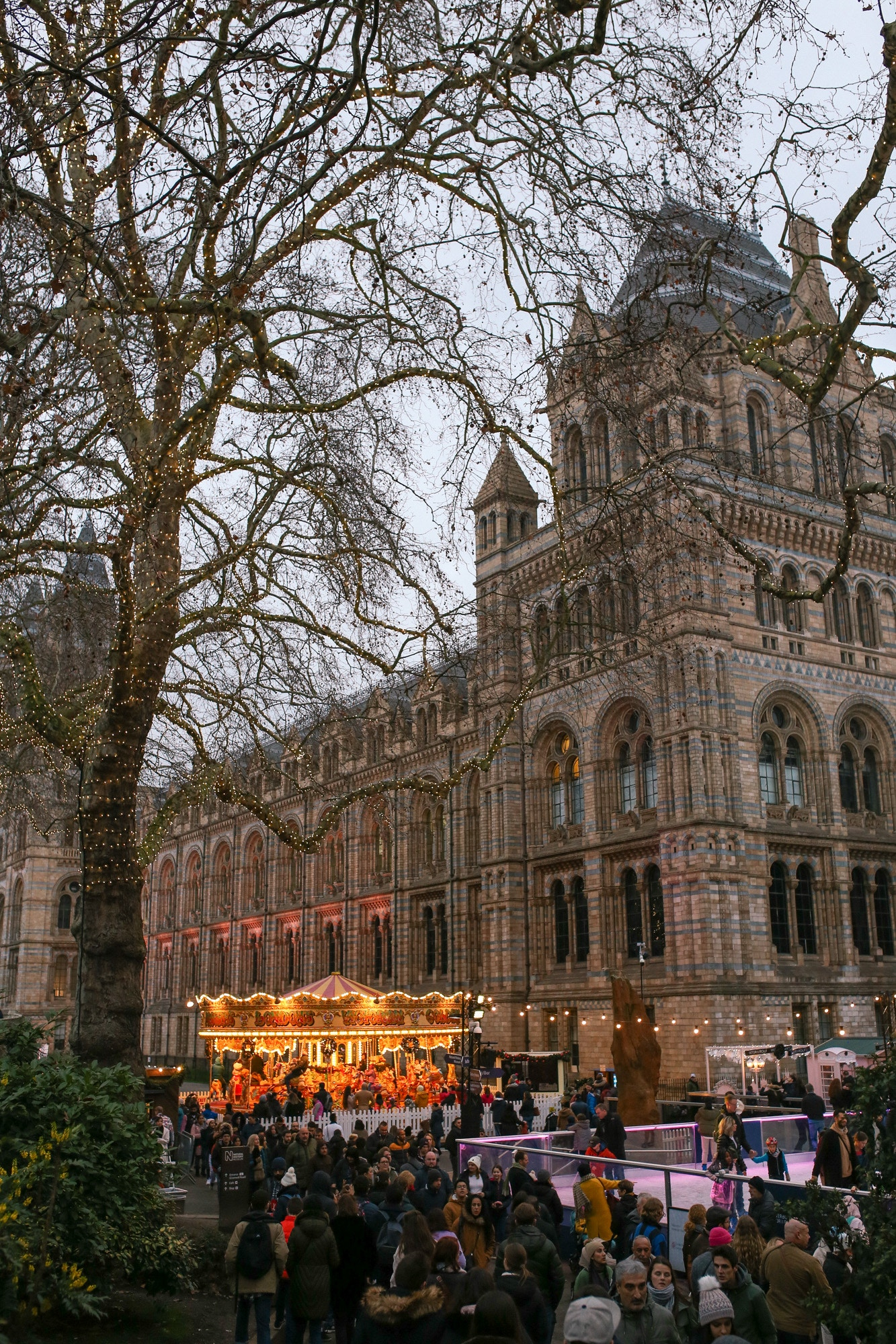 The Natural History Museum in London is a must-see at Christmas time with a carousel, skating rink and fairy lights.