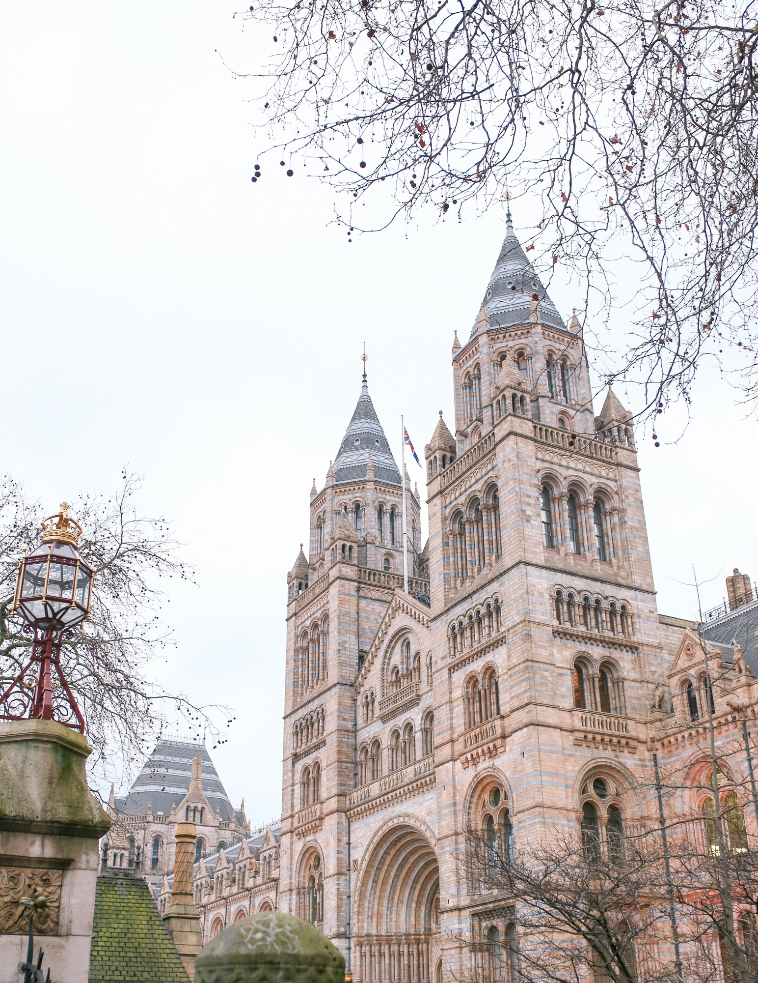 Natural History Museum, London is located on Cromwell Road and features an incredible collection.