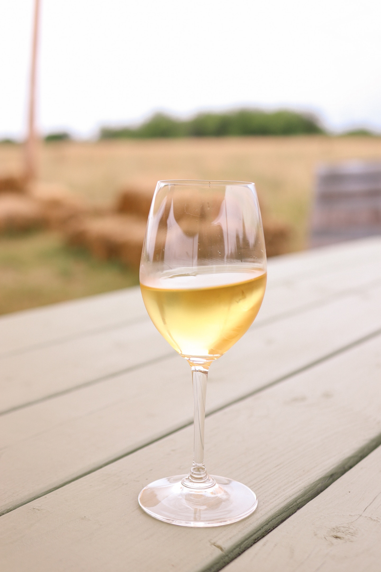 Best Wineries in Prince Edward County: Trail Estate Winery Foxcroft Chardonnay is a beautiful wine. Learn more about this winery and 5 other spots in PEC!